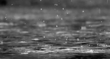 too much rain